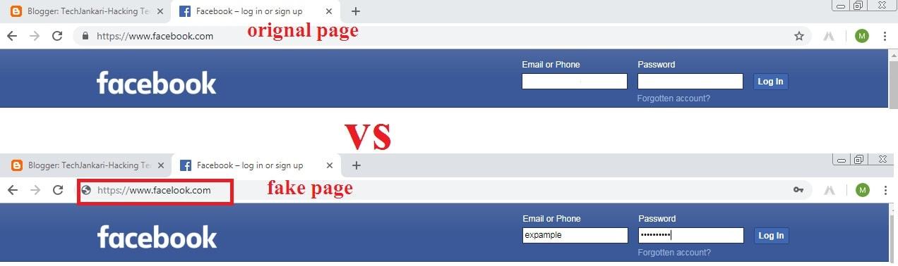 Phishing Attack fake page