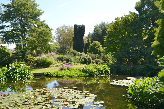 A view of the gardens across a pond