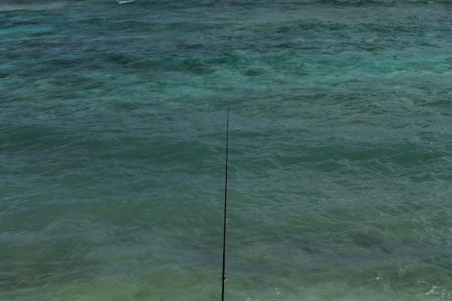 beach-fishing ビーチでの釣り