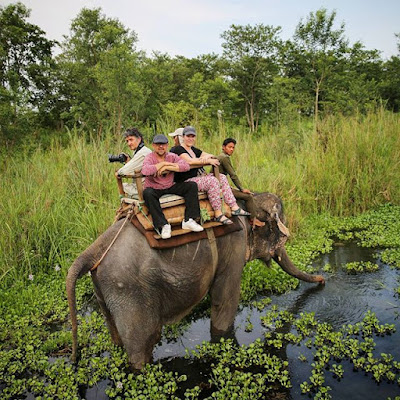 Visitantes de Chitwan en elefante