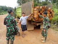 Satgas Yonif Para Raider 502/UY Gagalkan Praktek Illegal Loging