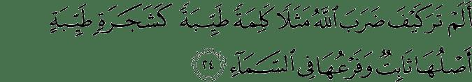 Surat Ibrahim Ayat 24