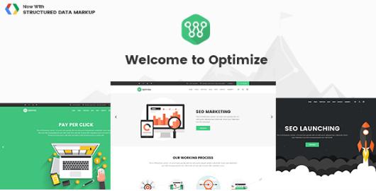 Optimize v1.5, SEo Optimize - Best Social Media Wordpress Theme