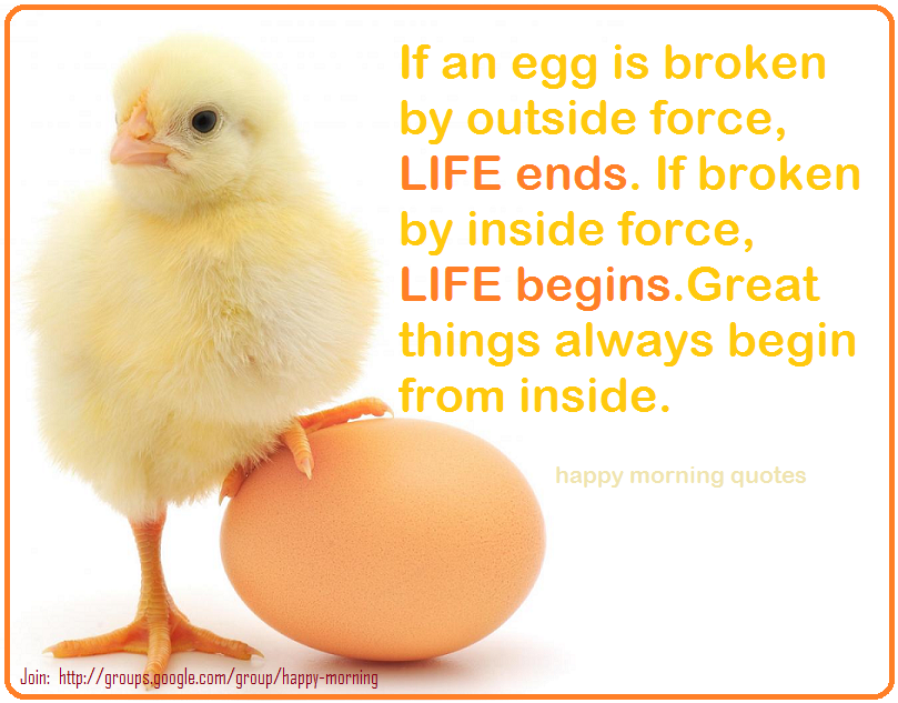 Chicken Egg Or The Quotes Quotesgram: Eggs Quotes. QuotesGram
