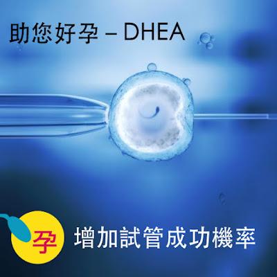 補充DHEA,不但能提昇卵巢退化後雌激素、黃體激素及雄性激素的活性,有助於改善婦女的卵巢反應、卵巢儲能不佳的問題
