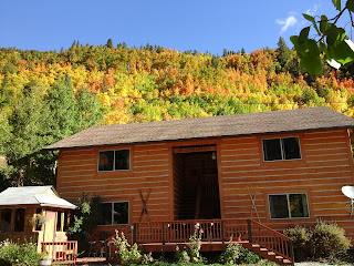 Exterior sunny fall day of a log sided 4-plex with Aspen trees full of gold leaves and pine trees behind.  White gravel in the driveway, gazebo surrounded by wild flowers.