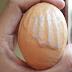 """Masya Allah, Telur yang berlafaz """"ALLAH"""" Sempat Membuat Heboh Makasar"""