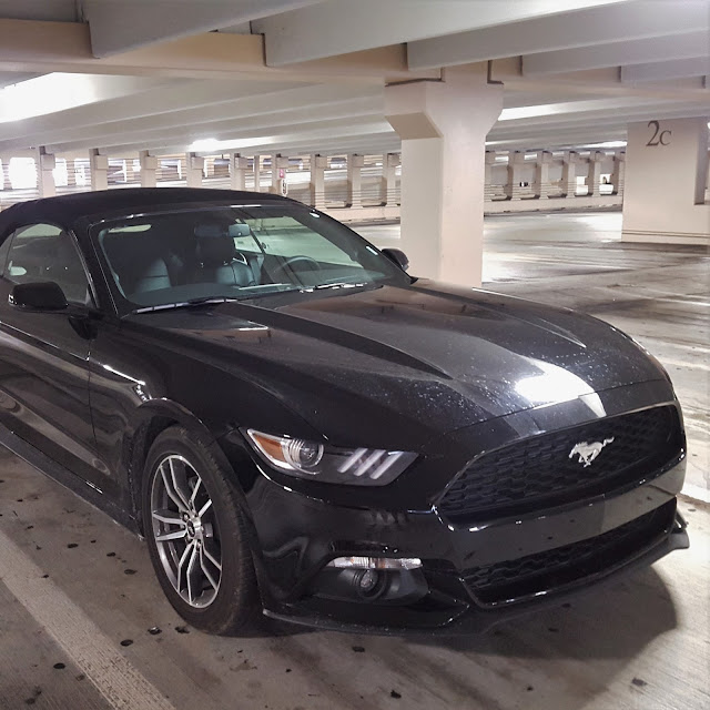 Ford Mustang Hire Car Miami