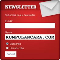 Plugin Newsletter gratis untuk WordPress