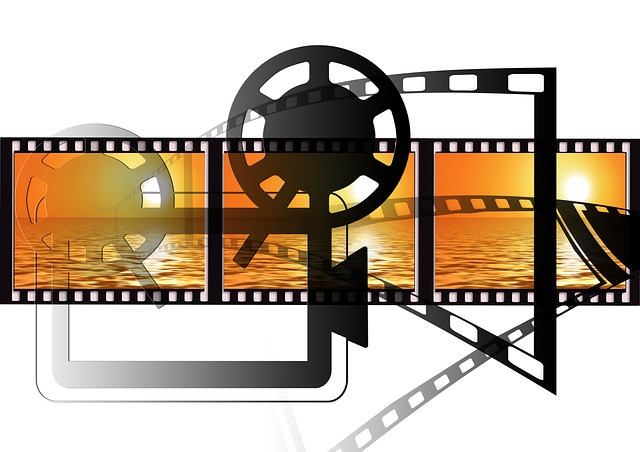 separar pistas de audio y vídeo con windows movie maker