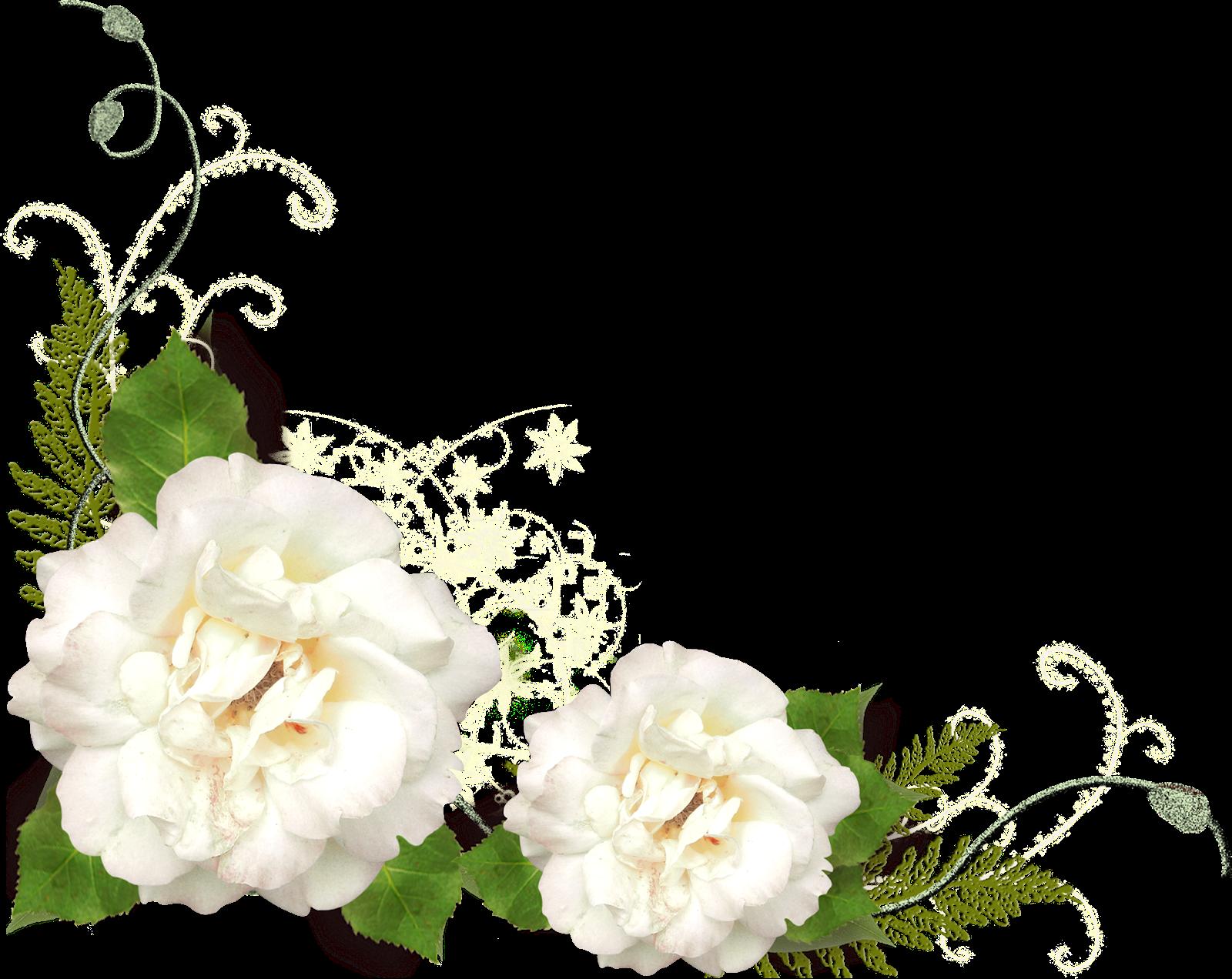 Marcos Esquineros Para Fotos De Flores