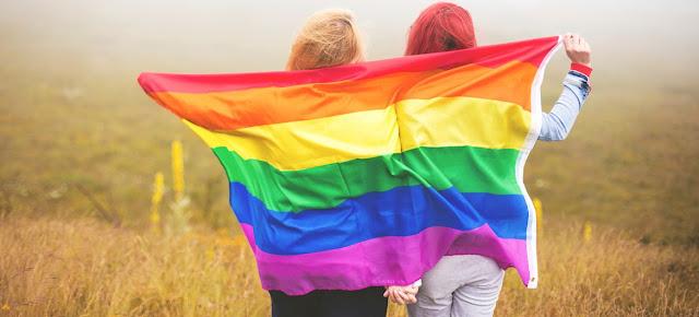 Daniel Pereira deve sancionar criação de Conselho LGBT em RO