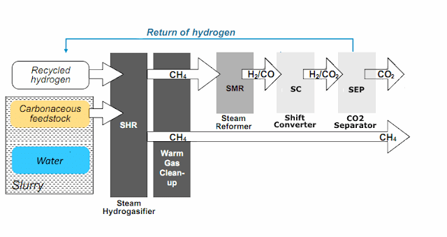Converting brown coal - without drying - to methane (and/or hydrogen)