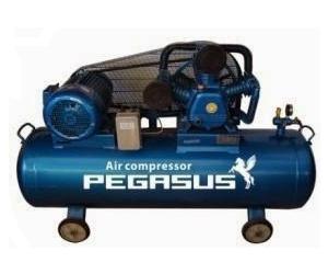 Máy nén khí Pegasus TM-W-0.67/12.5-500L