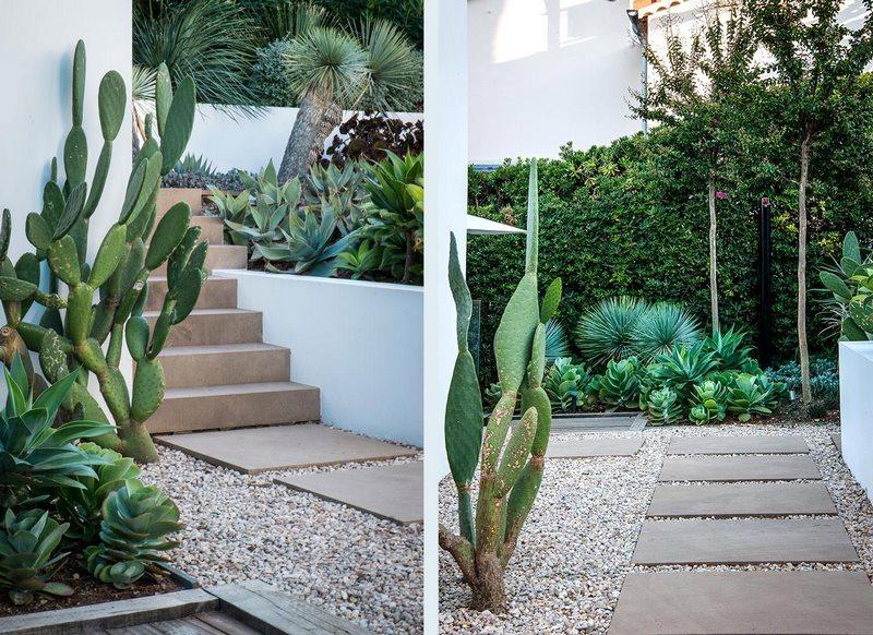 Escaleras cubiertas con madera en Jardín con plantas suculentas, diseñado por el Anthony Paul en Cap d'Antibes,  Alpes Marítimos, sur de Francia
