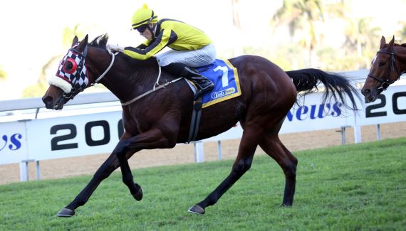 Solid Speed - Vodacom Durban July 2016