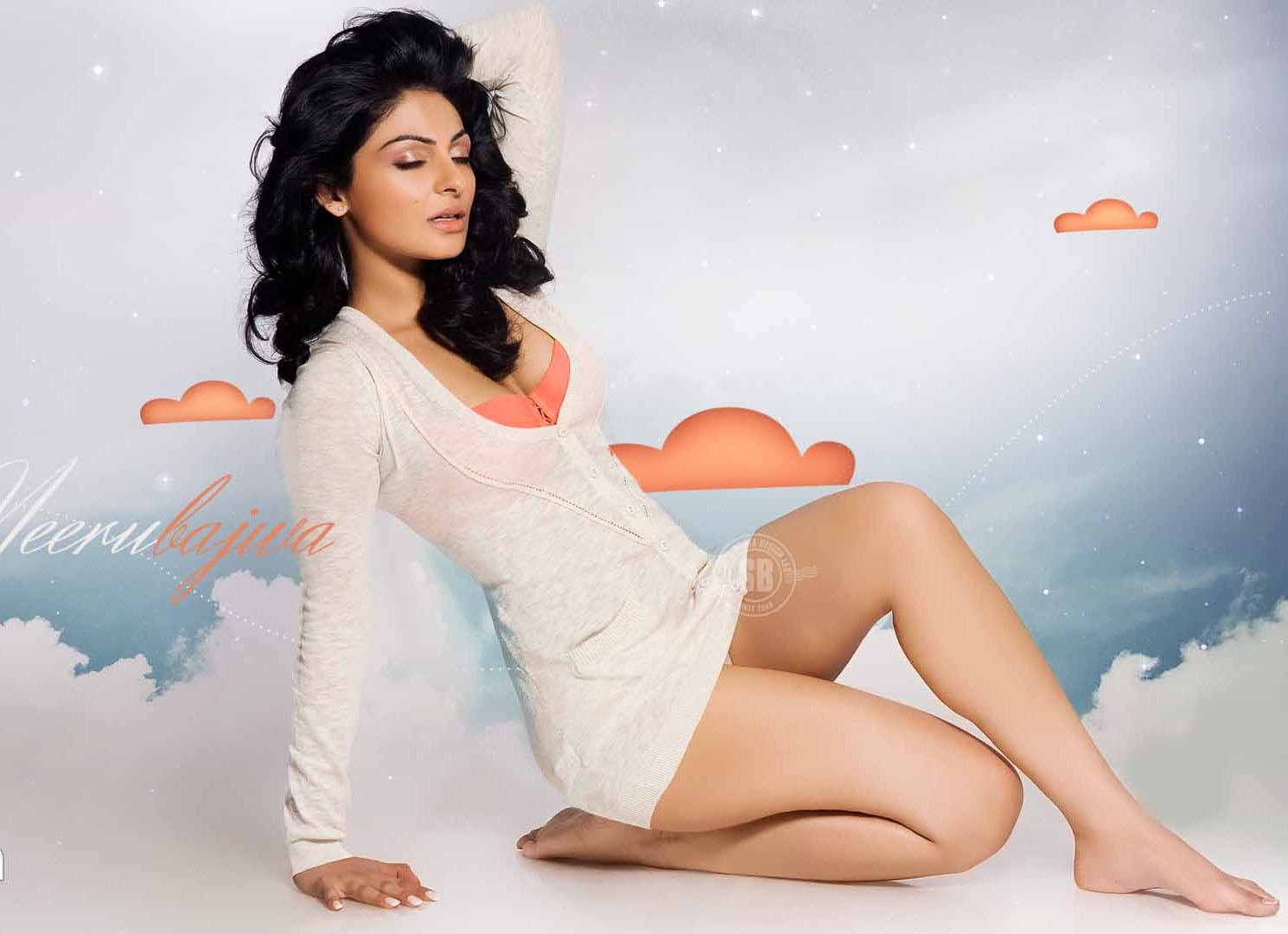Awesome Actress Photos Neeru Bajwa Spicy Hot Thighs-8177