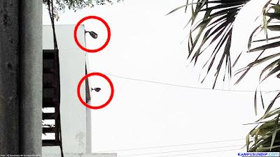 CCTV Gerbang Kampus Undip