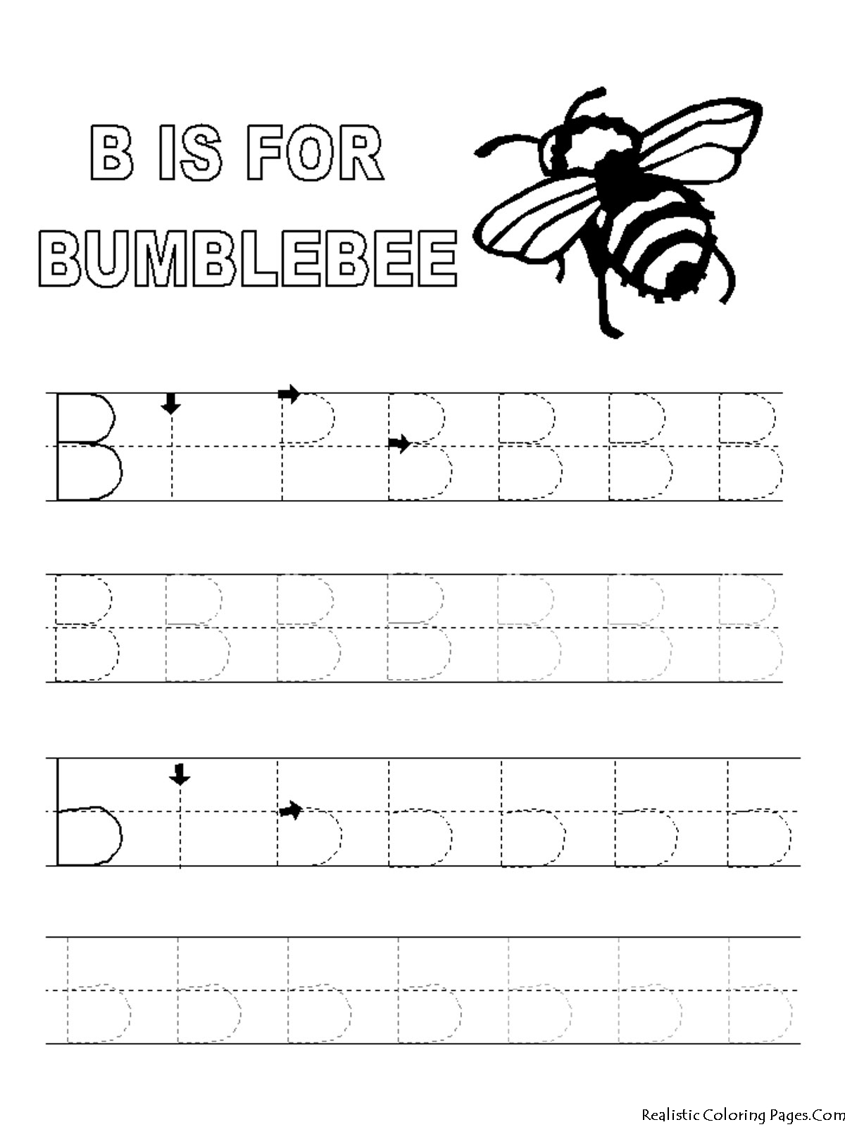 B Letters Alphabet Coloring Pages