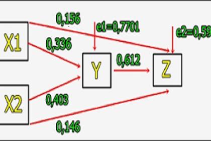 Definisi Teknik Analisis Jalur Pada Penelitian