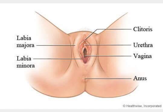 best way to keep vagina clean jpg 1152x768
