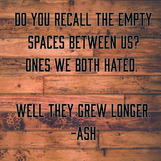 """Do you recall the empty spaces between us? ones we both hated. Well they grew longer."""