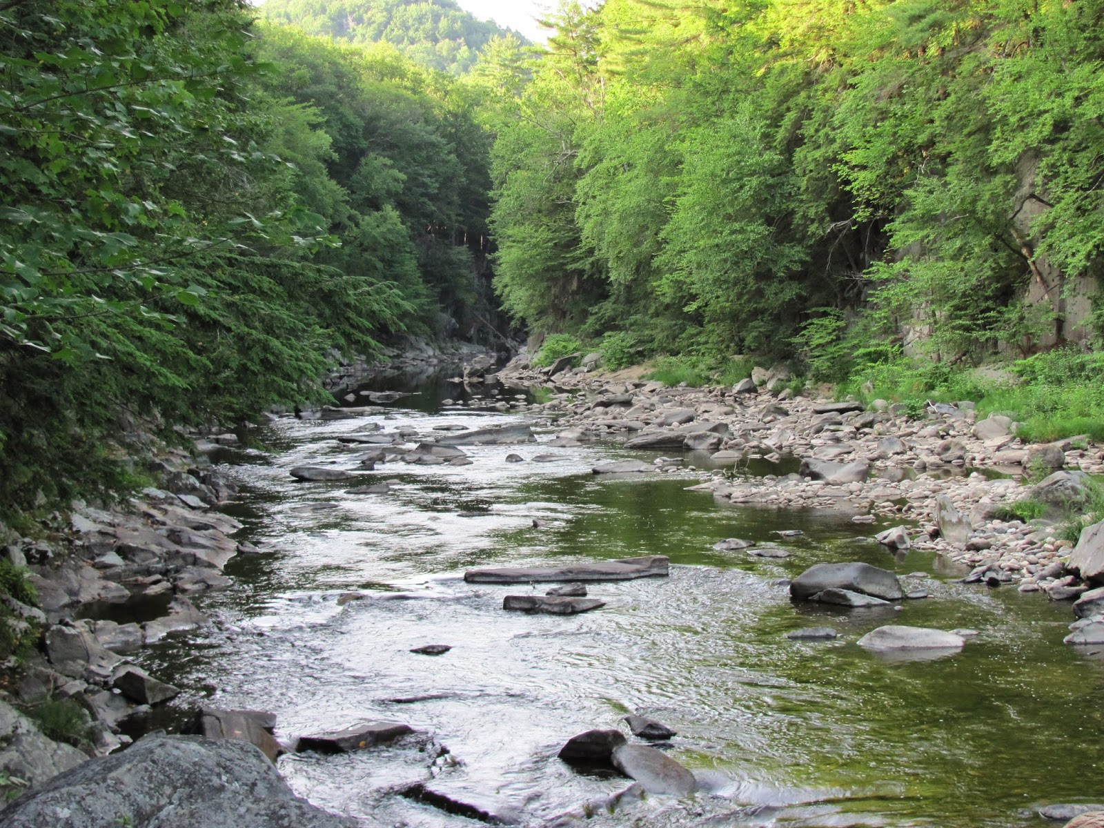 Millers swift and eb fly fishing forum welcome to trout for Eastern fly fishing magazine