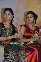 Pichuva Kaththi Tamil Movie Audio Launch Stills  0039.jpg