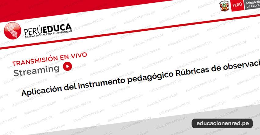VIDEOCONFERENCIA: PerúEduca explica sobre las rúbricas para la evaluación de los docentes de primaria del 2020 - MINEDU - www.minedu.gob.pe