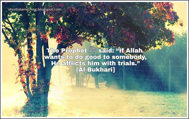 hadith good trails