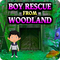 AvmGames Boy Rescue from Woodland Walkthrough