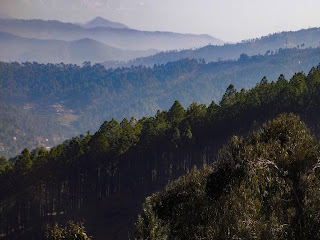 Things to do in Kausani