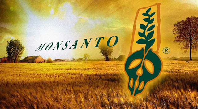 Why We Love Monsanto Is Scrambling To Bury This Breaking Story – Don't Let This Go Unshared! (And You Should, Too!)