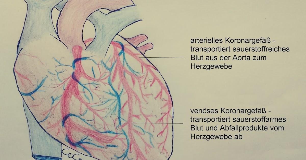 754 Kilometer: Herzinfarkt - Wenn das Herz schmerzt