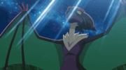 Capitulo 40 Temporada 16: ¡Festejando el Cometa del Héroe!