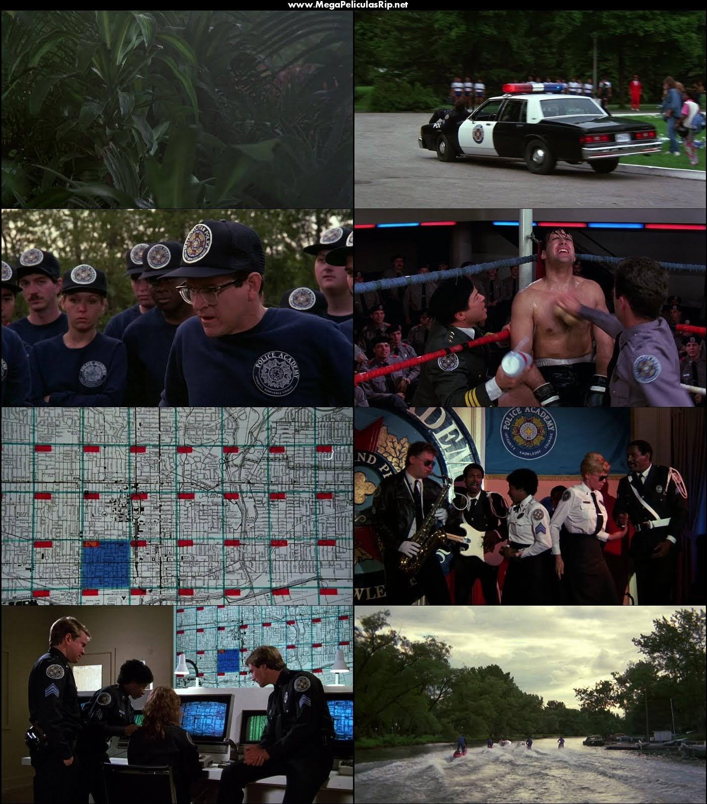 Locademia de policia 3 1080p Latino