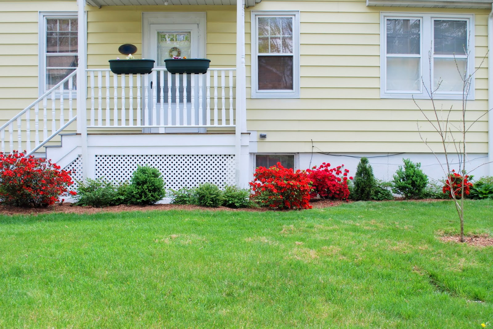 In the Little Yellow House: Mulching the Front Yard
