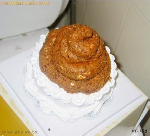Những chiếc bánh sinh nhật hài VL, đống cứt