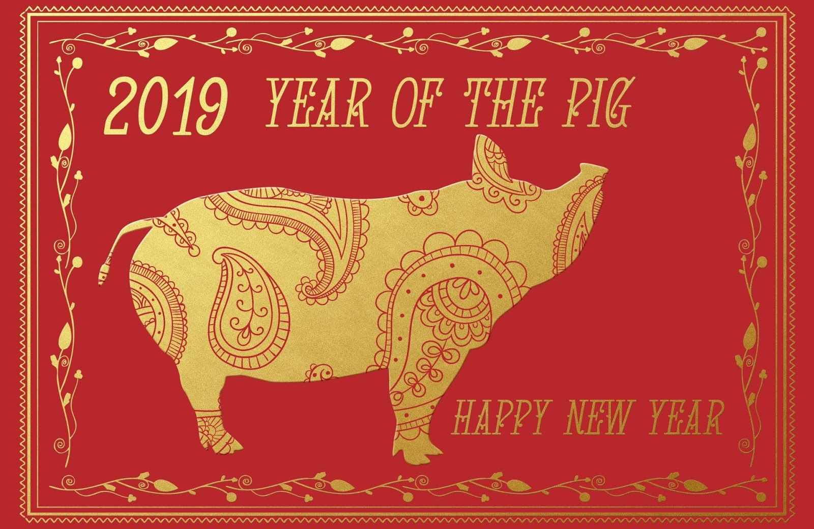 pig, year of the pig