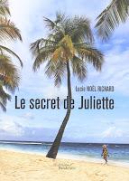 http://leslecturesdeladiablotine.blogspot.fr/2017/08/le-secret-de-juliette-de-lucie-noel.html