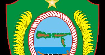 Hasil Quick Count Pilkada Pilbup Kepulauan Sula 2020 Idezia