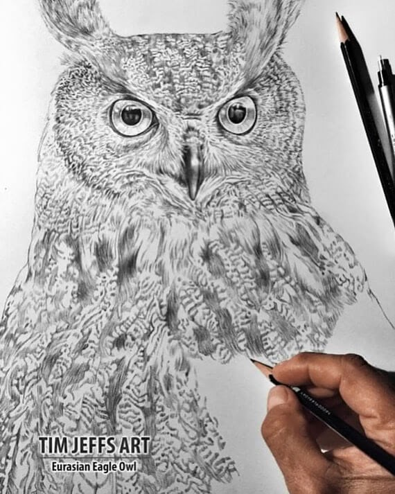 01-Eurasian-Eagle-Owl-Tim-Jeffs-www-designstack-co