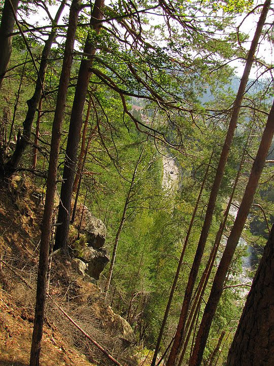 Dolina Prutu.