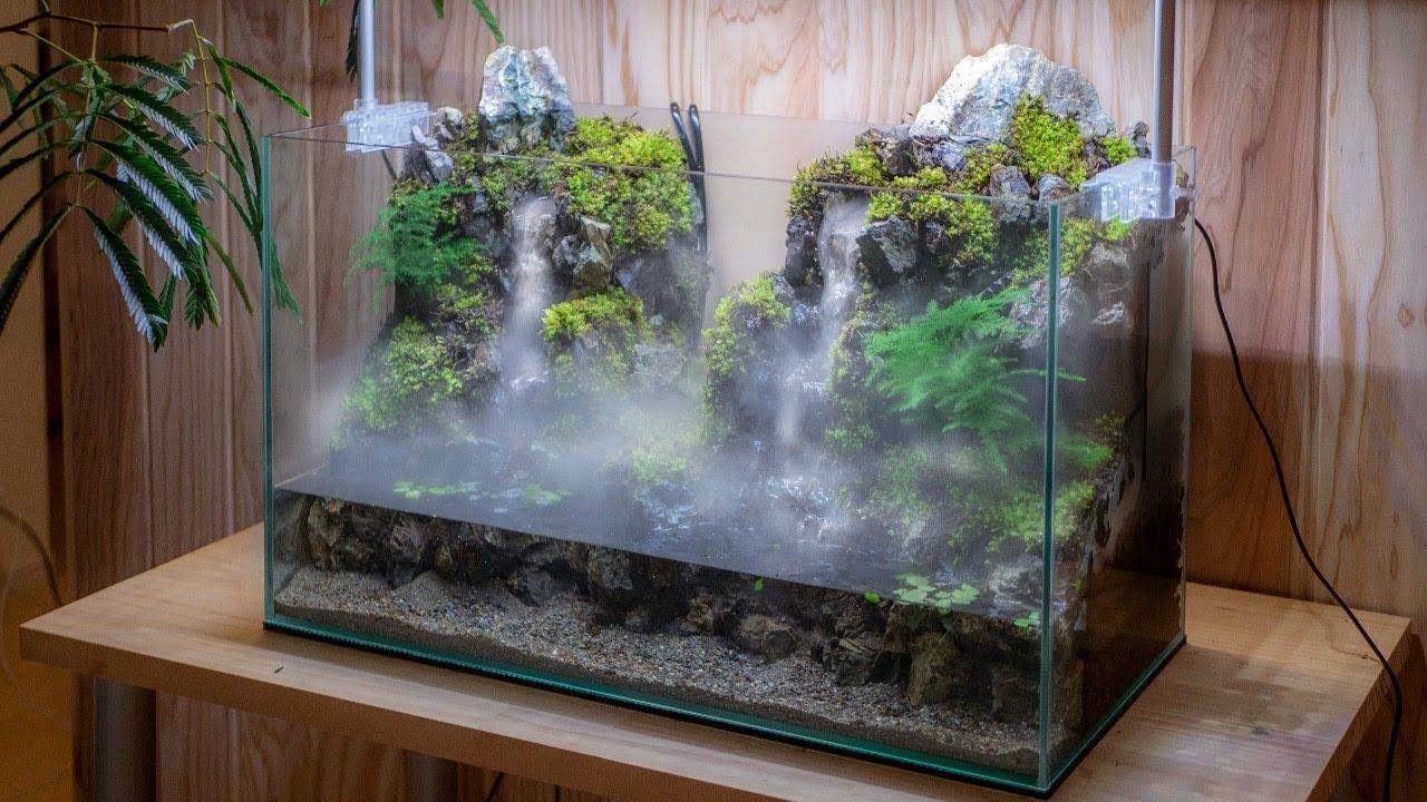 Contoh Desain Aquascape Air Terjun Dan Cara Membuatnya