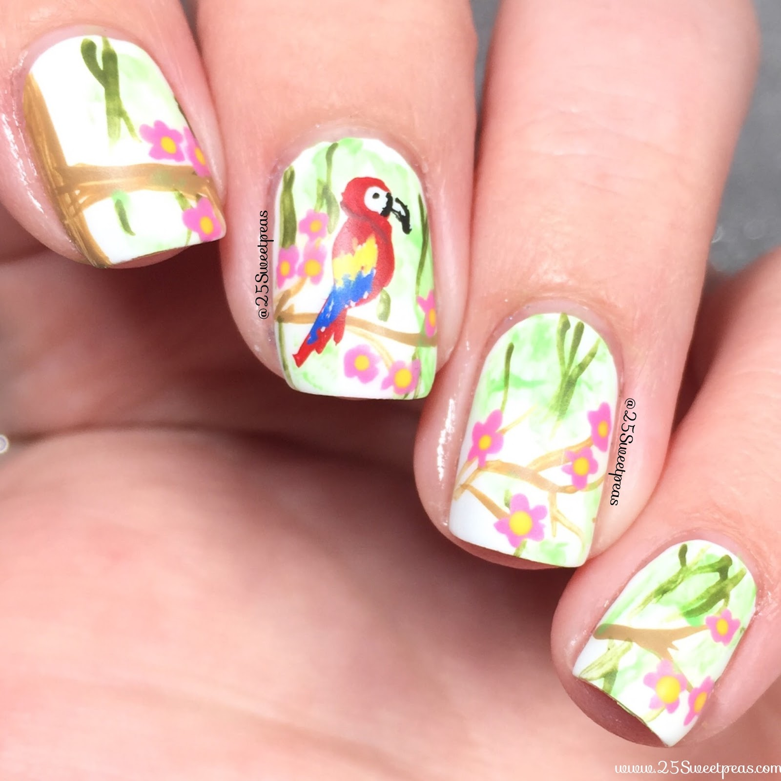 Macaw Nail Art