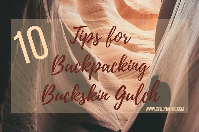 10 Tips for Backpacking Buckskin Gulch, Backpacking Buckskin Gulch with Dogs