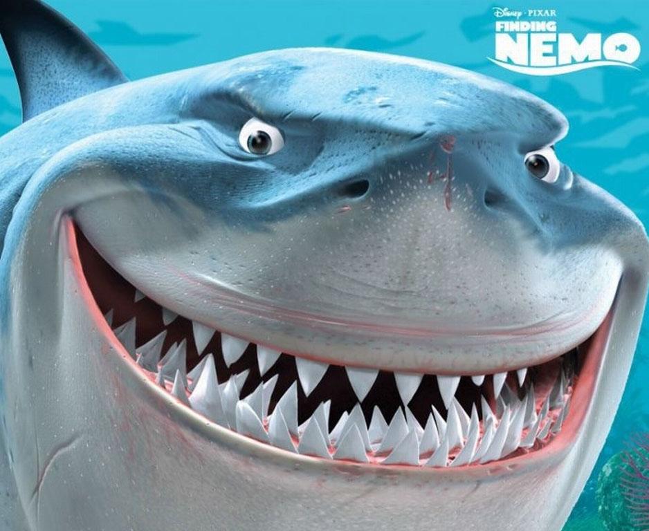 Pixar Cars Desktop Wallpaper 7 Disney Pixar Animal Bruce From Finding Nemo Cartoon