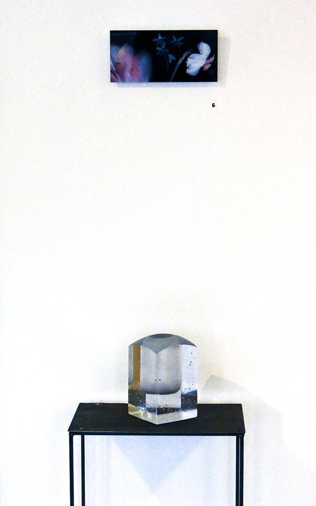 Ars Longa, Trimtemps, kevät, taidenäyttely, valokuvanäyttely, taide, näyttely, suomalainen taide, valokuvataide, taidenäyttelyn avajaiset, scanography, lasitaide