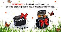 Castiga un cos de picnic pliabil sau o geanta frigorifica