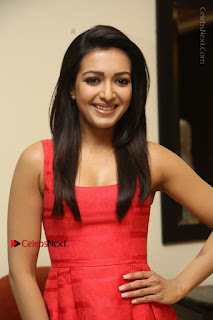 Actress Catherine Tresa Latest Pos in Red Short Dress at Intex Air Conditioners Launch  0011.jpg